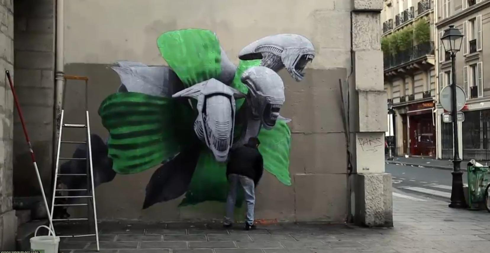 news défense d'afficher, reportage interactif sur le street art -
