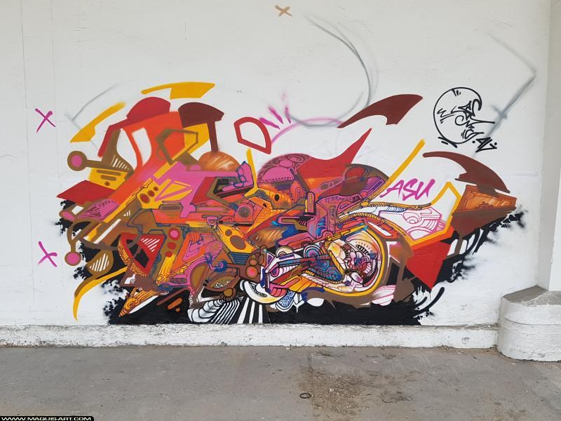 Photo de JOWEL, réalisée au Maquis-art Wall of fame - L'aérosol, Paris