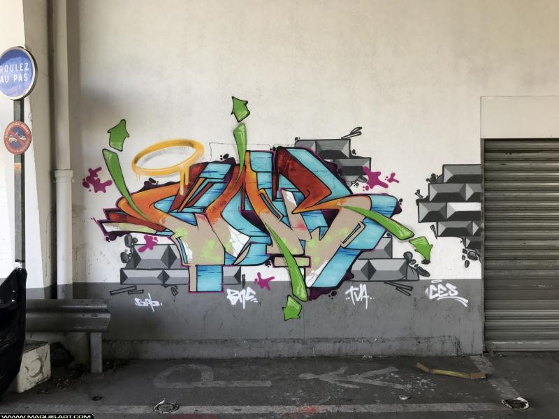 Photo de GABONE, réalisée au Maquis-art Wall of fame - L'aérosol, Paris