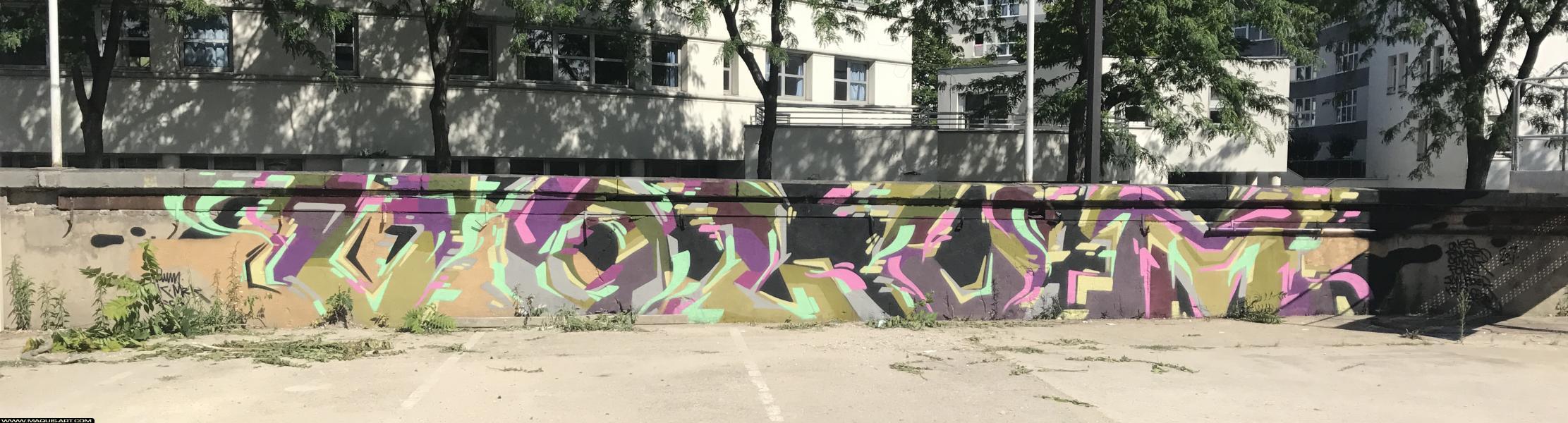 Photo de VOLUM, réalisée au Maquis-art Wall of fame - L'aérosol, Paris