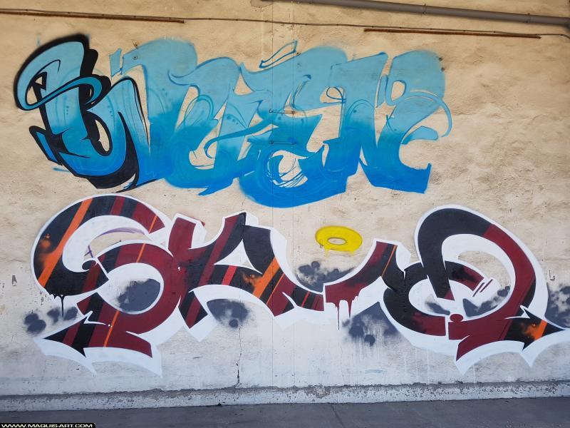 Photo de WUEN, SKUD, réalisée au Maquis-art Wall of fame - L'aérosol, Paris