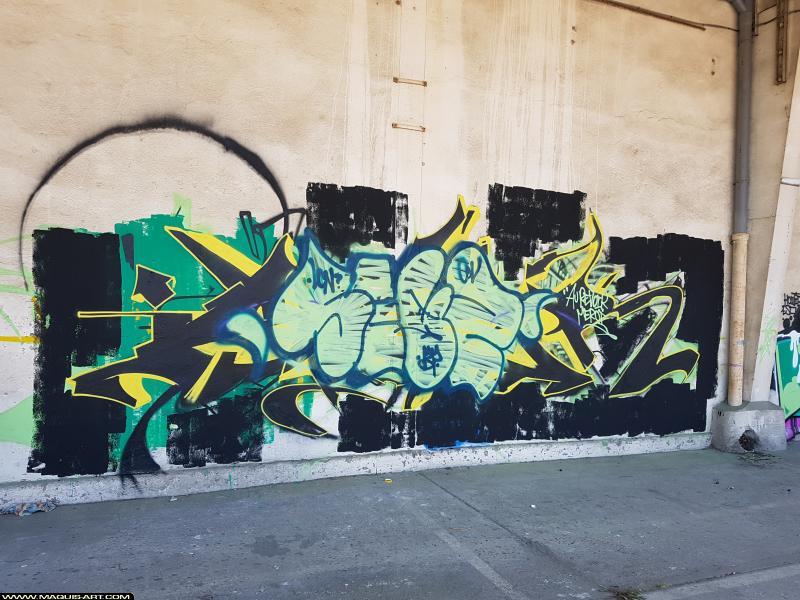 Photo de SEYZE, réalisée au Maquis-art Wall of fame - L'aérosol, Paris