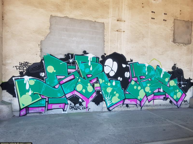 Photo de PASTEK, réalisée au Maquis-art Wall of fame - L'aérosol, Paris