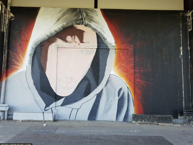 Photo de KSR, réalisée au Maquis-art Wall of fame - L'aérosol, Paris