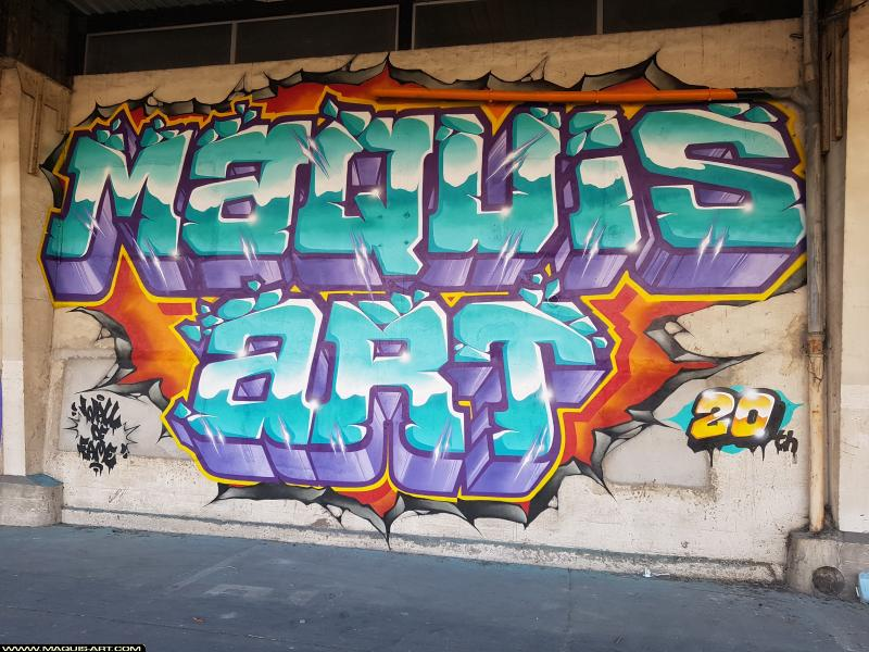 Photo de ELAS, SOZE, réalisée au Maquis-art Wall of fame - L'aérosol, Paris