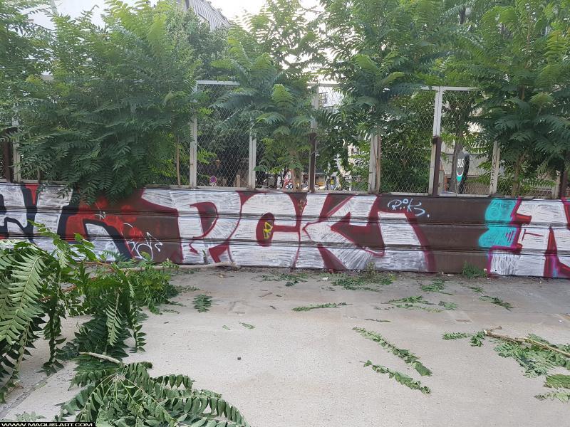 Photo de PCK, réalisée au Maquis-art Wall of fame - L'aérosol, Paris