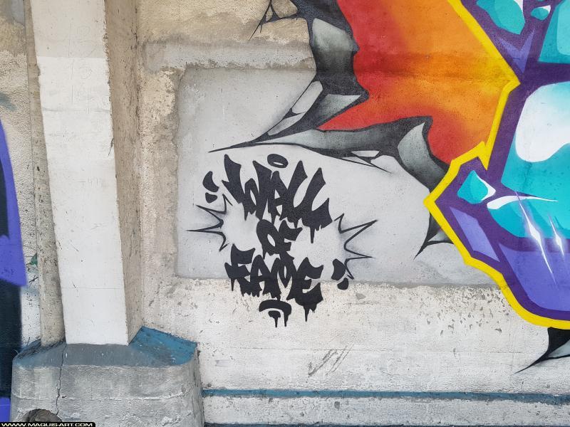 Photo de ELAS, réalisée au Maquis-art Wall of fame - L'aérosol, Paris