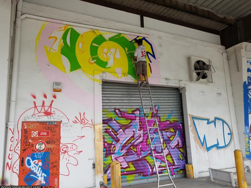 Photo de VMD, SKEY, NEAZ (OTS), réalisée au Maquis-art Wall of fame - L'aérosol, Paris