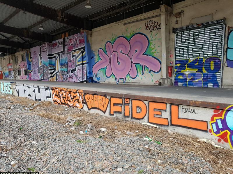 Photo de LFE, KSR, 184, CRUZ, FIDEL, NDEK, 740, 95C, A2R, réalisée au Maquis-art Wall of fame - L'aérosol, Paris