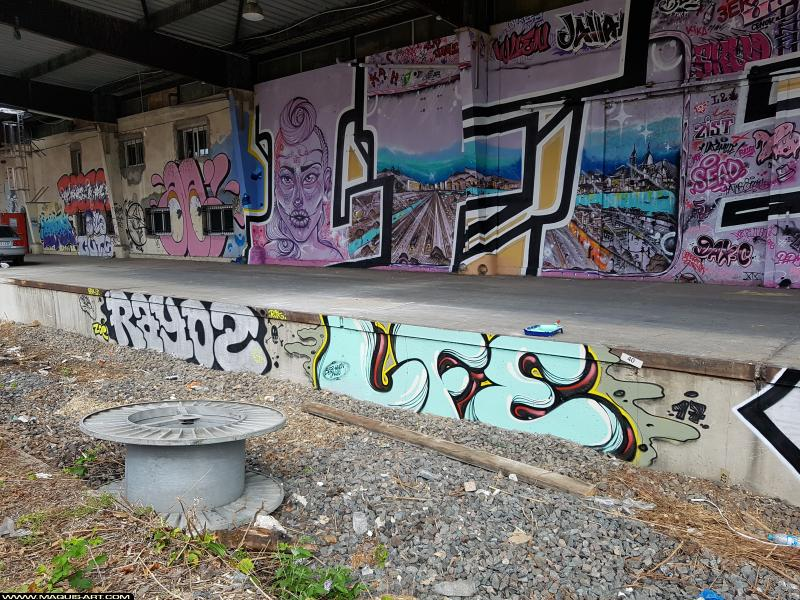Photo de LFE, RAYOZ, réalisée au Maquis-art Wall of fame - L'aérosol, Paris