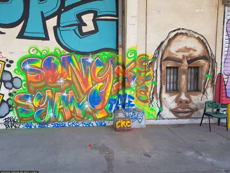 Photo de SONYX, SYAM, réalisée au Maquis-art Wall of fame - L'aérosol, Paris