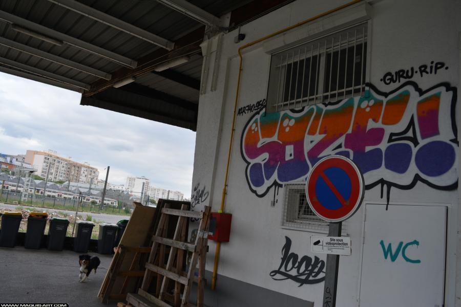 Photo de SOZE, réalisée au Maquis-art Wall of fame - L'aérosol, Paris