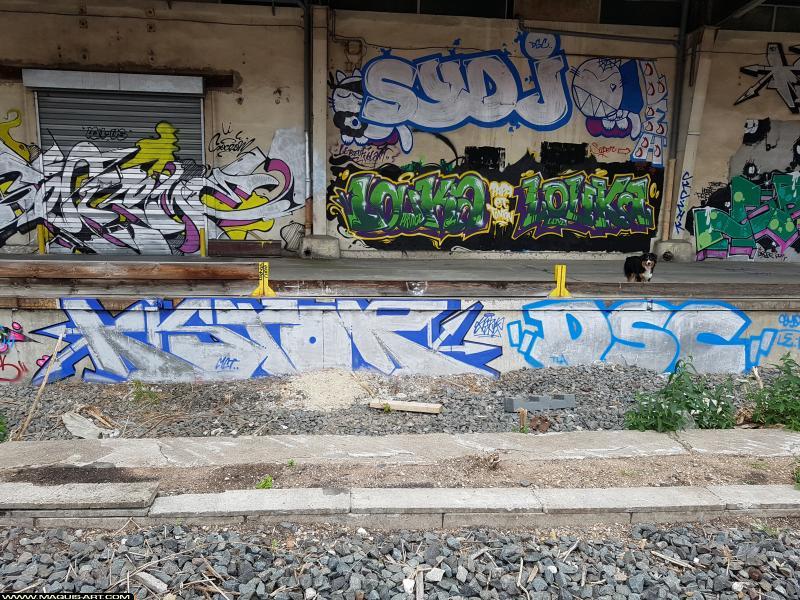 Photo de KISTOR, DSCby , SYD.J, SYD.J, LE H, réalisée au Maquis-art Wall of fame - L'aérosol, Paris