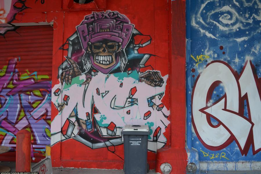 Photo de INXY, MCT, réalisée au Maquis-art Wall of fame - L'aérosol, Paris