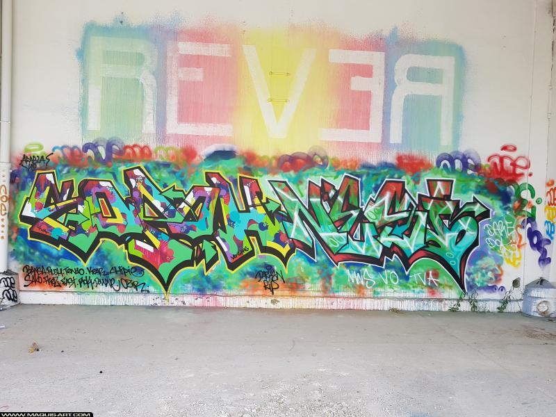 Photo de SOPOH, NESI, réalisée au Maquis-art Wall of fame - L'aérosol, Paris