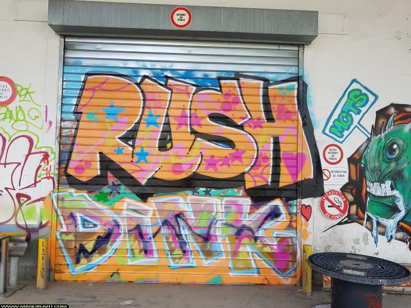 Photo de RUSH, DINK, réalisée au Maquis-art Wall of fame - L'aérosol, Paris