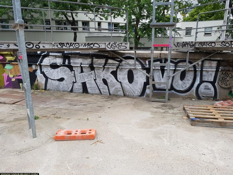 Photo de SAKO (MSP), VO, réalisée au Maquis-art Wall of fame - L'aérosol, Paris