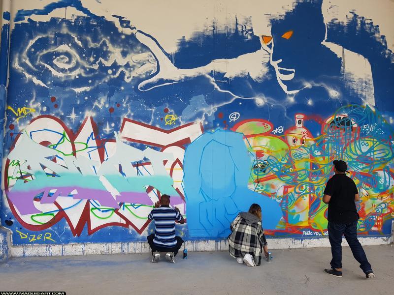 Photo de DINK, CLO, VUSUEL, réalisée au Maquis-art Wall of fame - L'aérosol, Paris