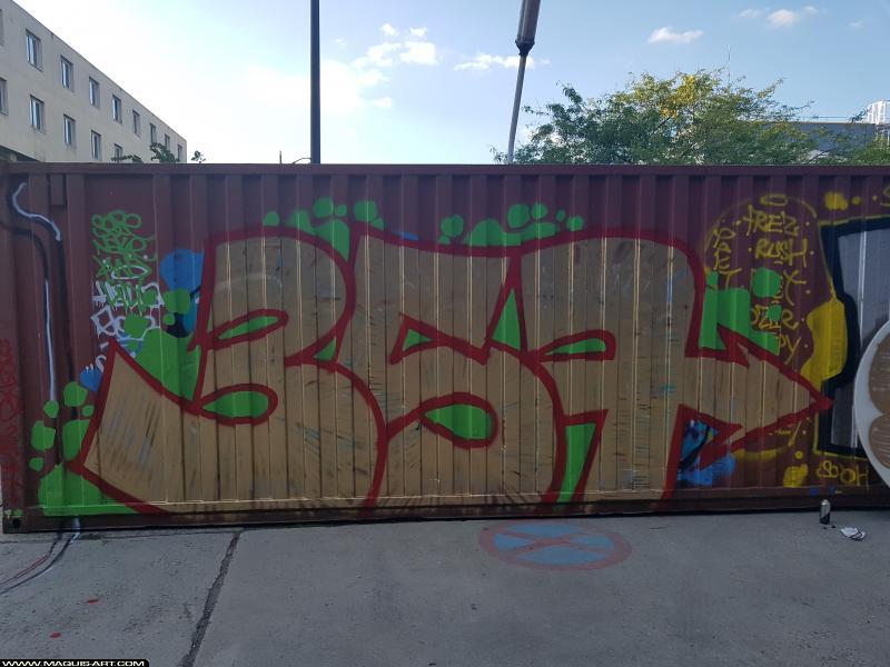 Photo de 357by , SEZ, réalisée au Maquis-art Wall of fame - L'aérosol, Paris