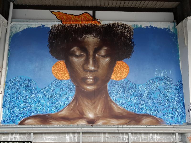 Photo de SHAKTE, réalisée au Maquis-art Wall of fame - L'aérosol, Paris