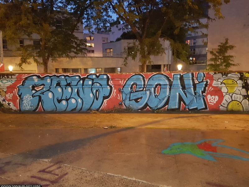 Photo de REENA, GONI, réalisée au Maquis-art Wall of fame - L'aérosol, Paris