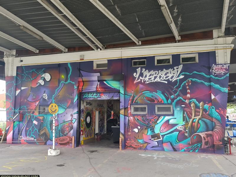 Photo de KZPER, YOSH, réalisée au Maquis-art Wall of fame - L'aérosol, Paris