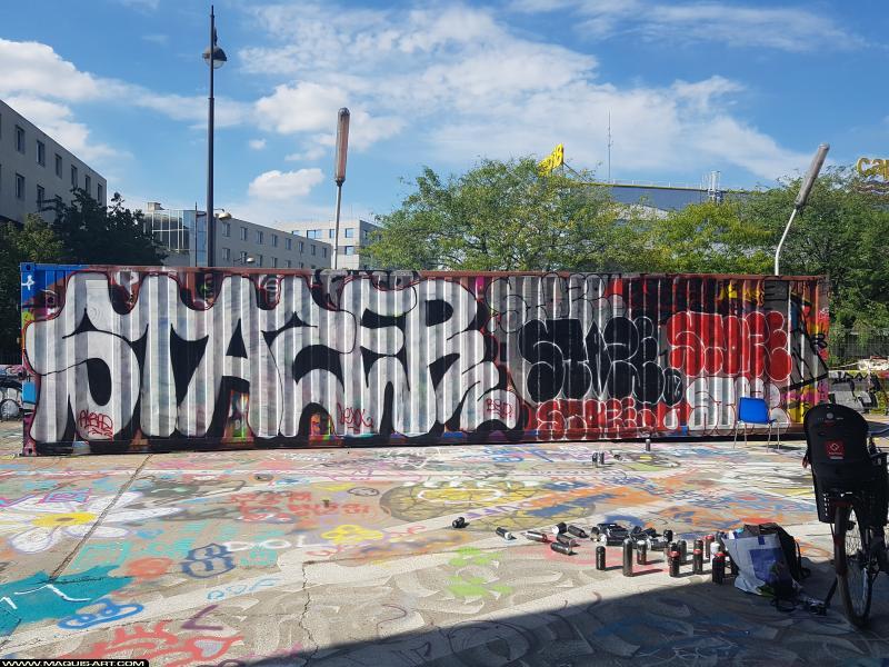 Photo de STAZE, réalisée au Maquis-art Wall of fame - L'aérosol, Paris