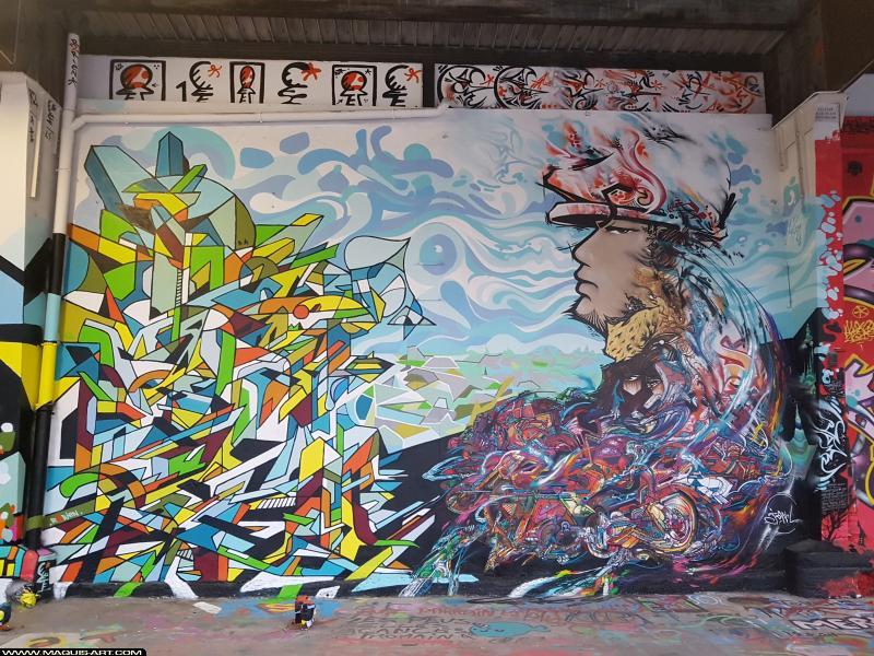 Photo de R2RIEN, JOWEL, réalisée au Maquis-art Wall of fame - L'aérosol, Paris