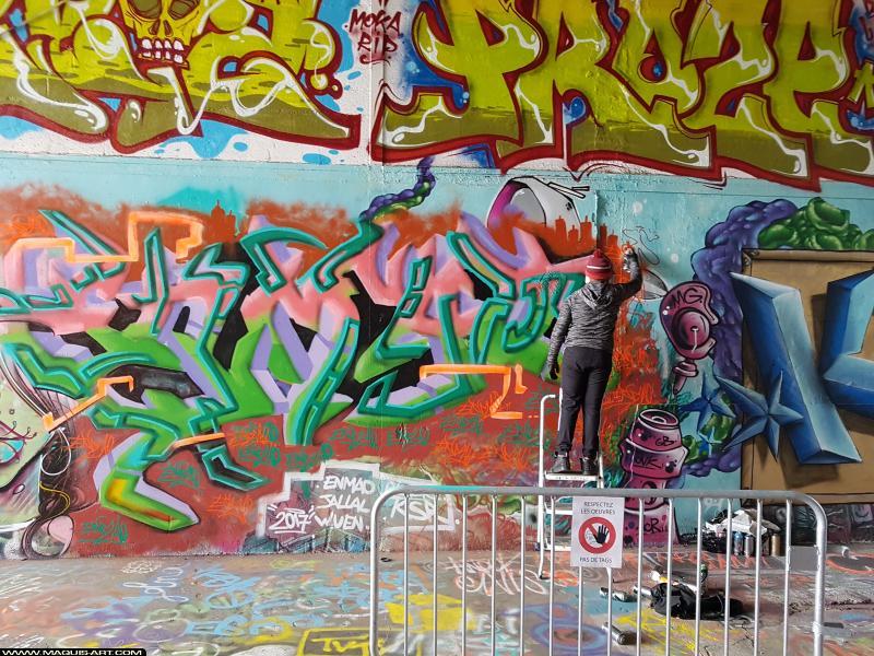 Photo de ENMAD, réalisée au Maquis-art Wall of fame - L'aérosol, Paris