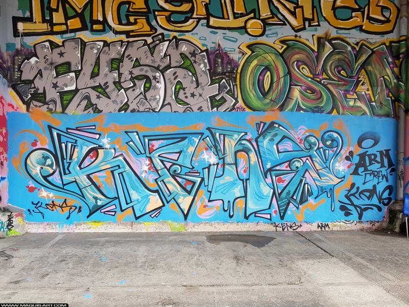 Photo de KENS, réalisée au Maquis-art Wall of fame - L'aérosol, Paris