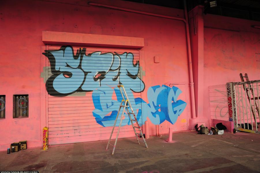 Photo de STIC, SHEG, réalisée au Maquis-art Wall of fame - L'aérosol, Paris