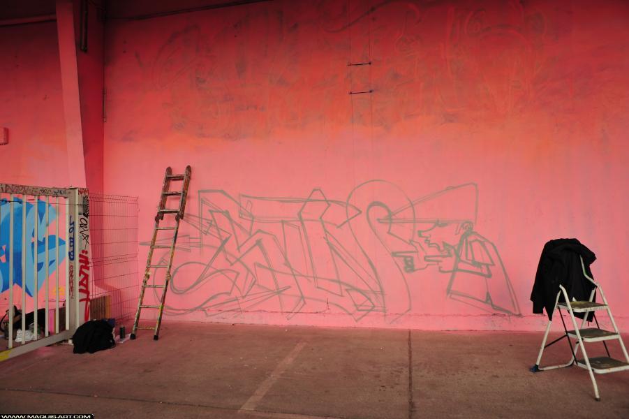 Photo de SINO, réalisée au Maquis-art Wall of fame - L'aérosol, Paris