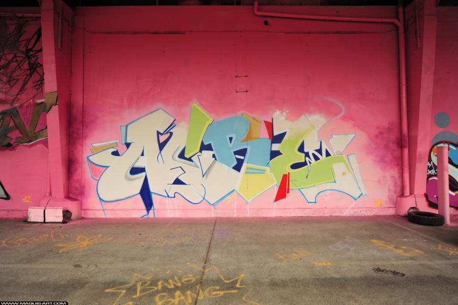 Photo de ACRE, réalisée au Maquis-art Wall of fame - L'aérosol, Paris