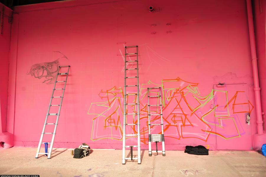 Photo de BOSTE, STEAK, réalisée au Maquis-art Wall of fame - L'aérosol, Paris