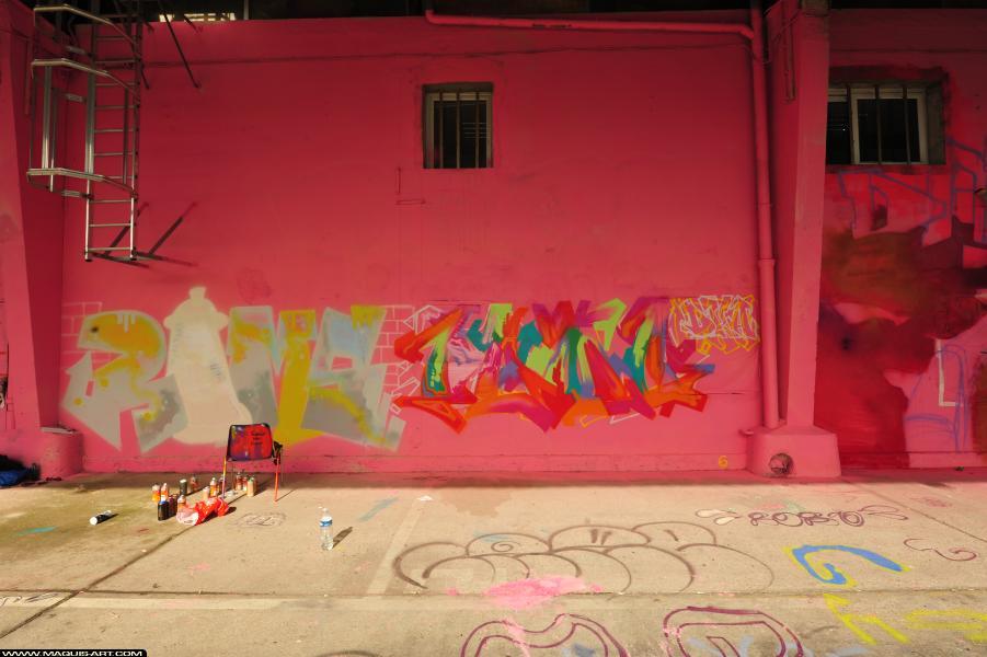 Photo de RAMSES, GEMO, réalisée au Maquis-art Wall of fame - L'aérosol, Paris