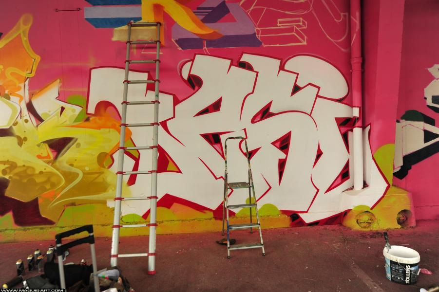 Photo de DESI, réalisée au Maquis-art Wall of fame - L'aérosol, Paris
