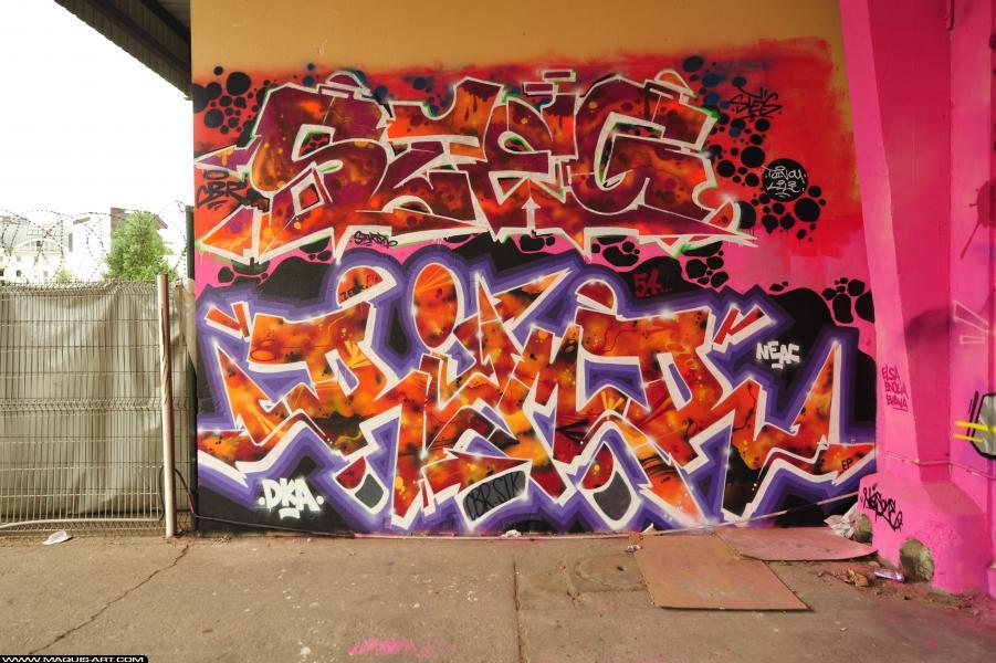 Photo de RIMR, réalisée au Maquis-art Wall of fame - L'aérosol, Paris