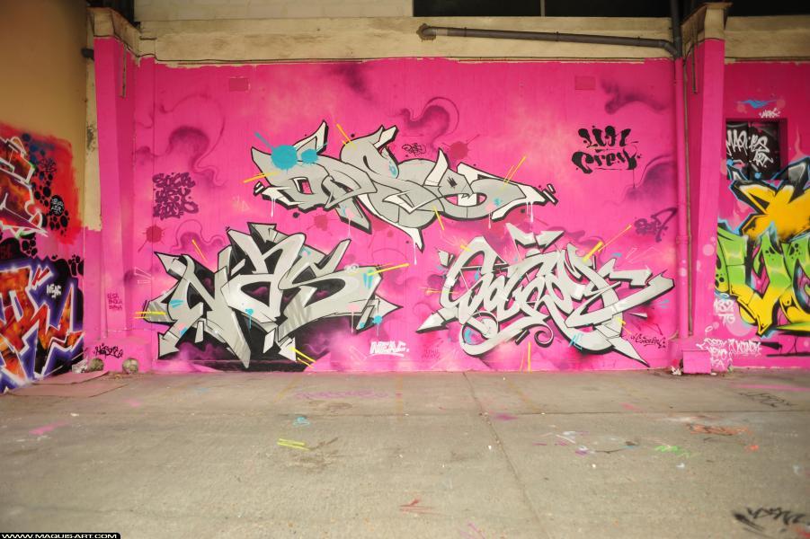 Photo de OPSE, SOCROME, réalisée au Maquis-art Wall of fame - L'aérosol, Paris