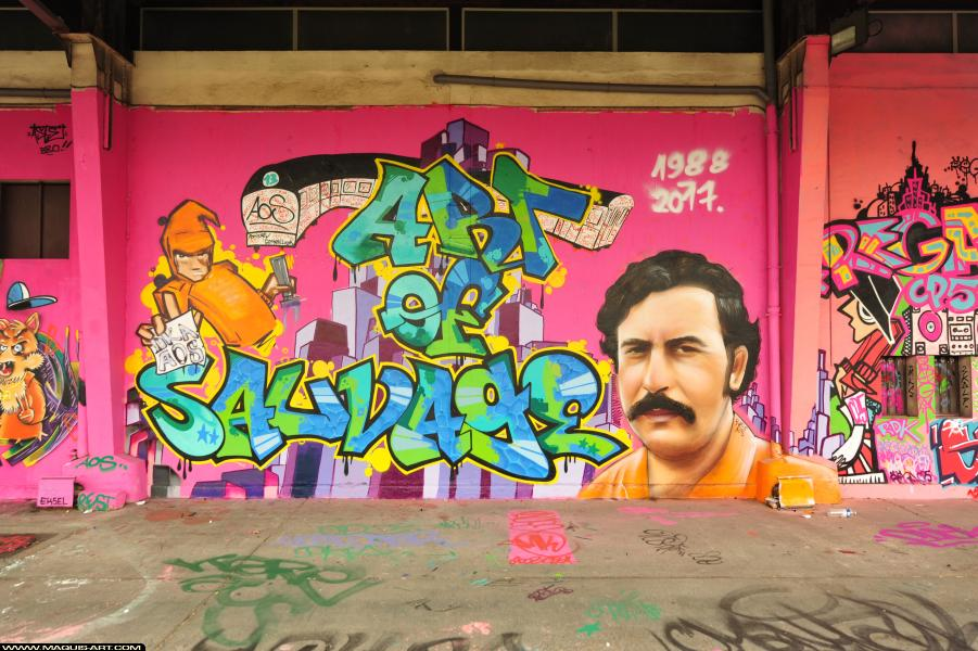 Photo de RAST, réalisée au Maquis-art Wall of fame - L'aérosol, Paris