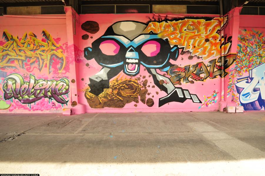 Photo de BNK, SKALP, réalisée au Maquis-art Wall of fame - L'aérosol, Paris