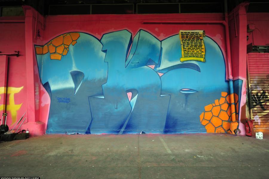 Photo de SKOFE, réalisée au Maquis-art Wall of fame - L'aérosol, Paris