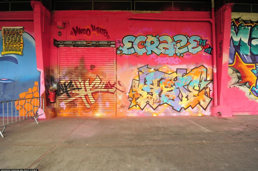 Photo de ECRAZ, KAST, ???, réalisée au Maquis-art Wall of fame - L'aérosol, Paris