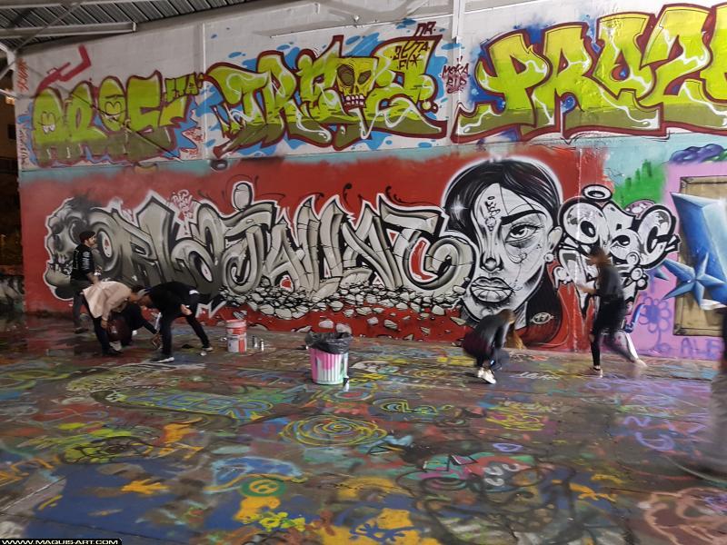 Photo de PROZE (3ER LFE), JALLAL, TREIZE, ARIS, ORLA, réalisée au Maquis-art Wall of fame - L'aérosol, Paris