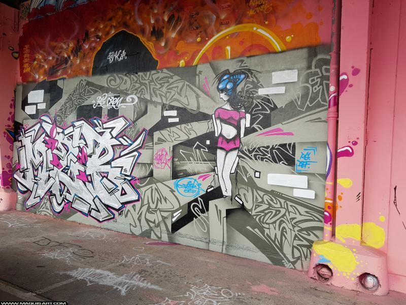 Photo de MIZER, HOBSEK, réalisée au Maquis-art Wall of fame - L'aérosol, Paris