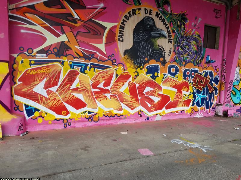 Photo de FCK, CHEUBI, réalisée au Maquis-art Wall of fame - L'aérosol, Paris