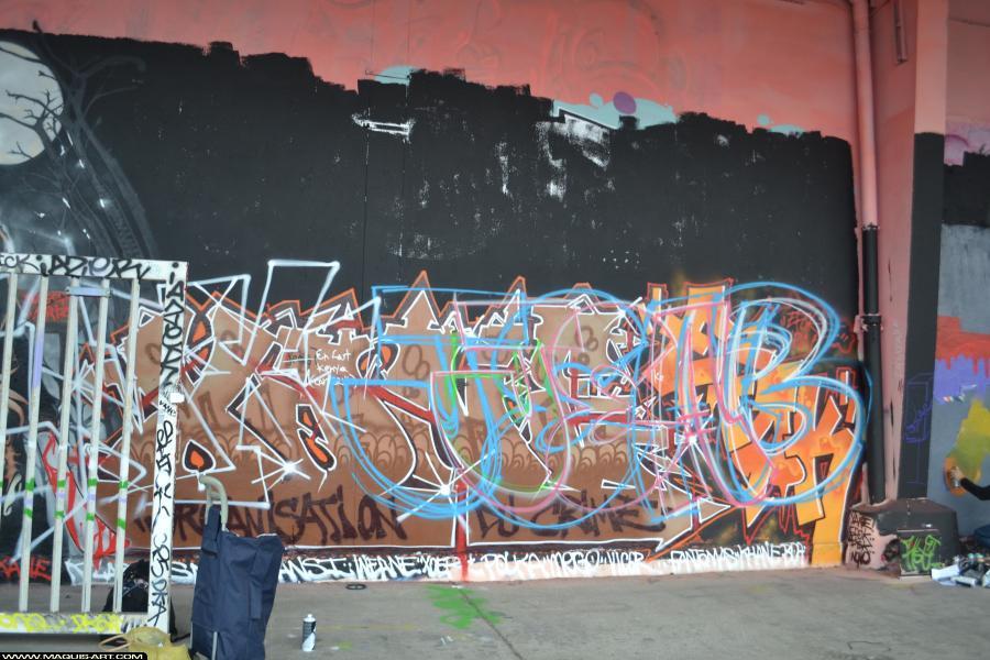 Photo de JEAB, réalisée au Maquis-art Wall of fame - L'aérosol, Paris