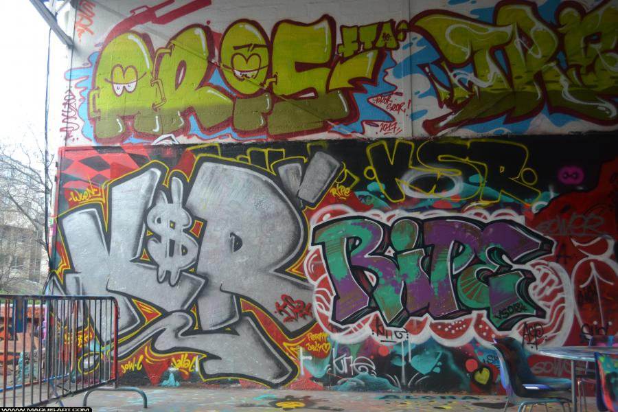 Photo de ARIS, KSR, RIPE, FTA, réalisée au Maquis-art Wall of fame - L'aérosol, Paris