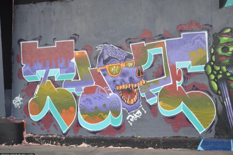 Photo de ODV, ???, réalisée au Maquis-art Wall of fame - L'aérosol, Paris