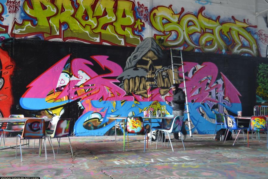 Photo de HOBSEK, MIZER, réalisée au Maquis-art Wall of fame - L'aérosol, Paris
