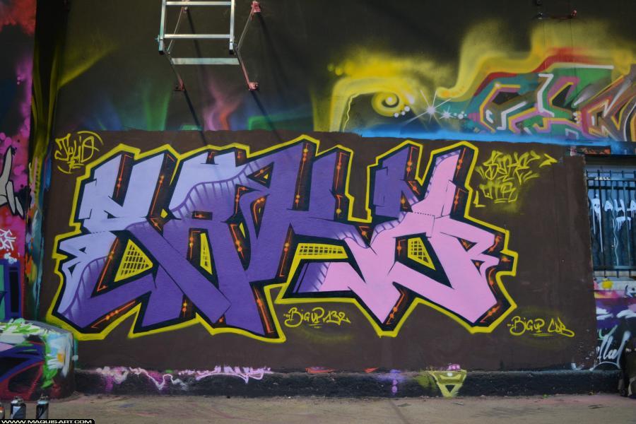 Photo de 132, SAKE, réalisée au Maquis-art Wall of fame - L'aérosol, Paris